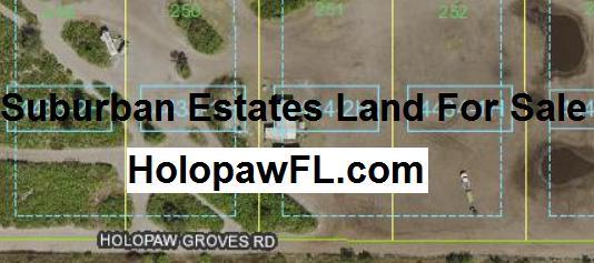 Suburban Estates Holopaw Florida Recreational Land For Sale
