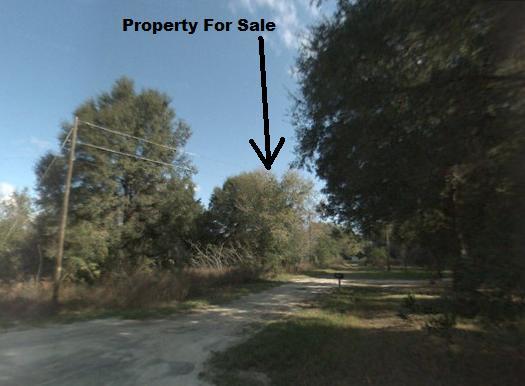Belleview Heights Estates
